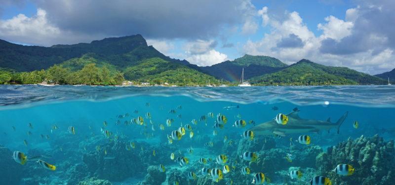 voyage-noce polynesie francaise